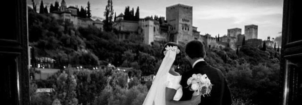 Vistas de la Alhambra desde el Palacio